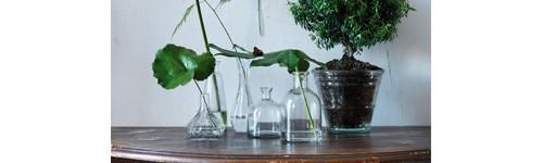 Vaser och Krukor